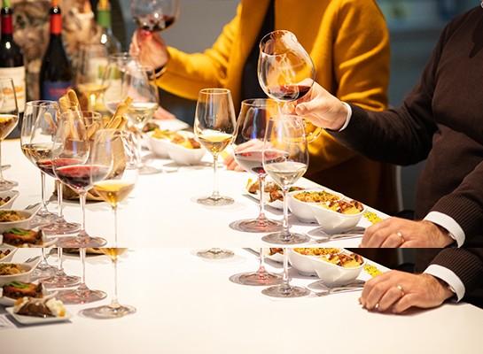 Mediterranea: tastings sicilian wines Donnafugata